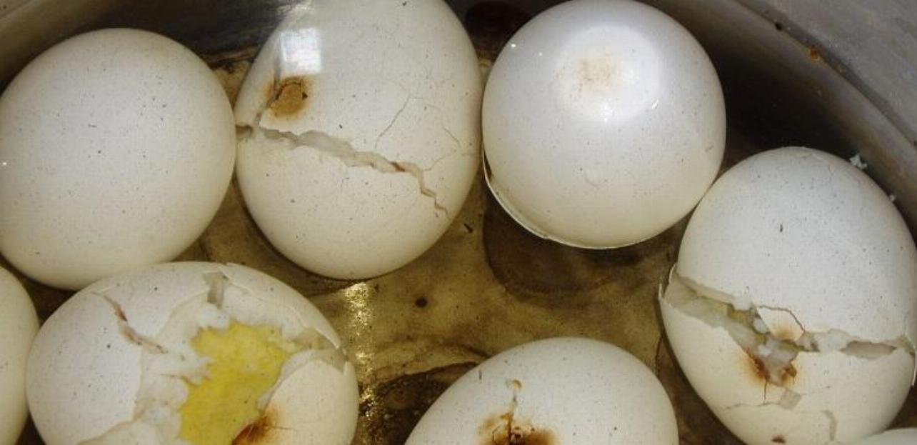 Boiling egg can be messy if you dont know this simple things