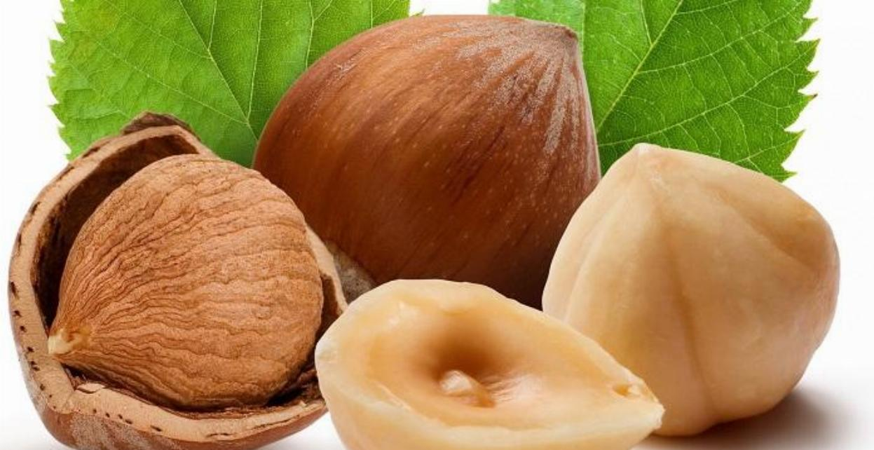 Benefits of Hazelnuts