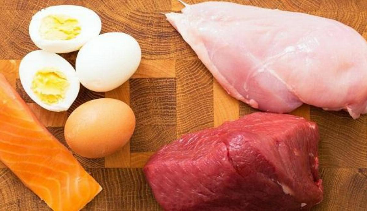 Is Excess of Protein Safe?