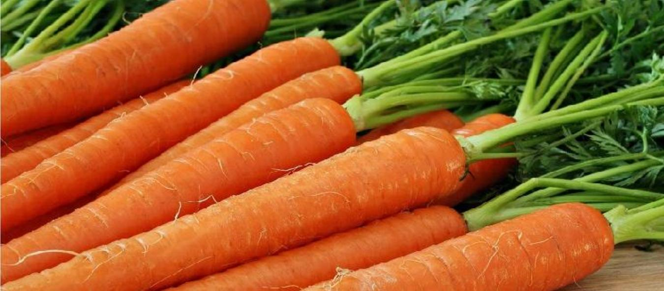 Carrot Smoothie Recipe